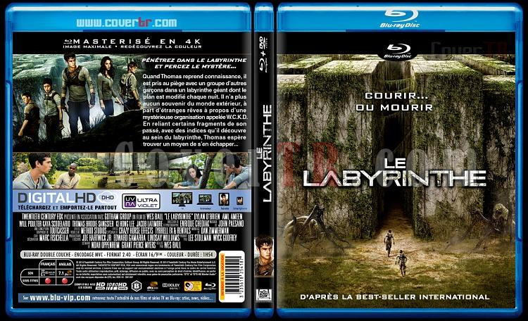 The Maze Runner (Le Labyrinthe) - Custom Bluray Cover - French [2014]-labyrinthe-3173x1762-11mmjpg