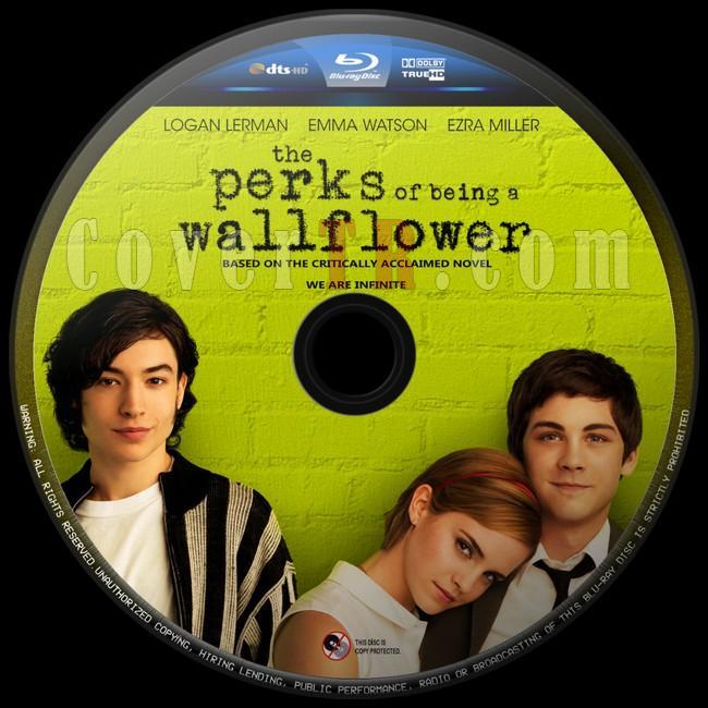 The Perks Of Being A Wallflower (Saksı Olmanın Faydaları) - Custom Bluray Label - English [2012]-saksi-olmanin-faydalari-2jpg