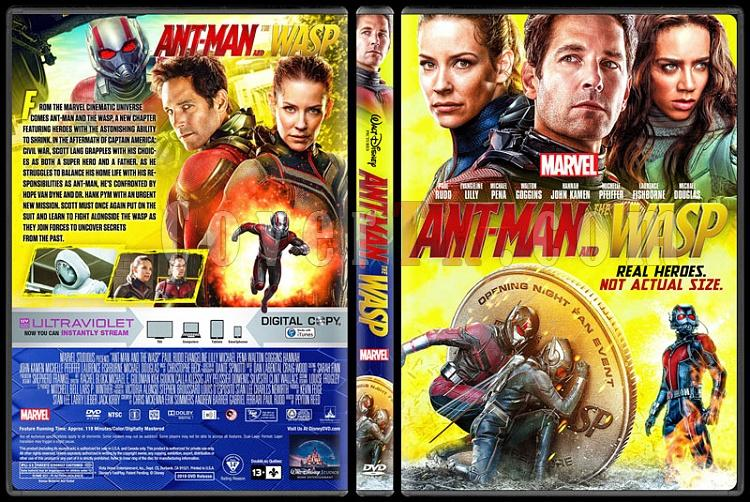 Ant-Man and the Wasp - Custom Dvd Cover - English [2018]-01jpg