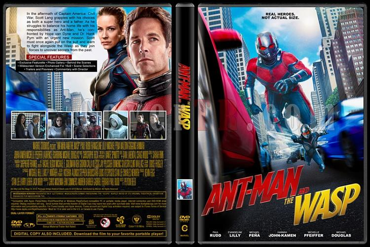 Ant-Man and the Wasp - Custom Dvd Cover - English [2018]-02jpg