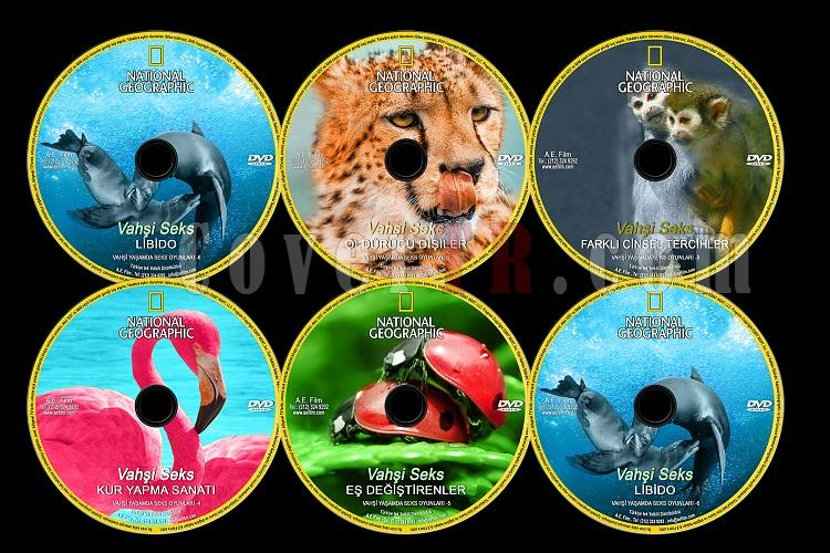 National Geographic:Vahşi Seks - Custom Dvd Label Set - English [2007]-national-geographic-vahsi-seks-setjpg