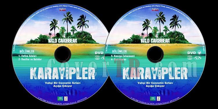BBC: Wild Caribbean (Karayipler) - Custom Dvd Label Set - Türkçe [2007]-bbc-earth-karayipler-wild-caribbeanjpg