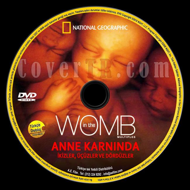 National Geographic: In The Womb Multiples (Anne Karnında ikizler,Üçüzler,Dördüzler) - Custom Dvd Label - Türkçe [2007]-national-geographic-anne-karninda-ikizler-ucuzler-dorduzler-womb-multiplesjpg