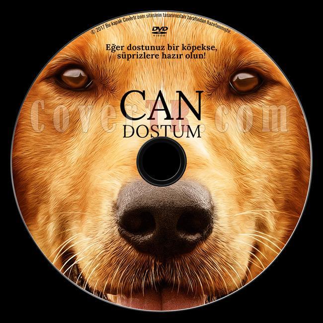 A Dog's Purpose (Can Dostum) - Custom Dvd Label - Türkçe [2017]-1jpg