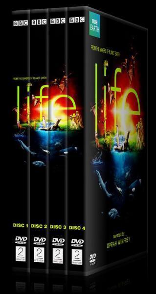 BBC Life Collection - Custom Dvd Cover Set - English [2009]-64164444313131jpg
