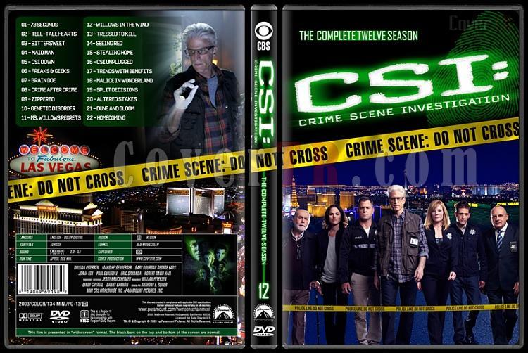 CSI: Crime Scene Investigation (Seasons 1-13) - Custom Dvd Cover Set - English [2000-?]-12jpg