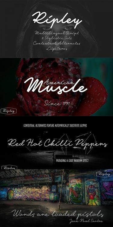 Ripley Font-coverjpg