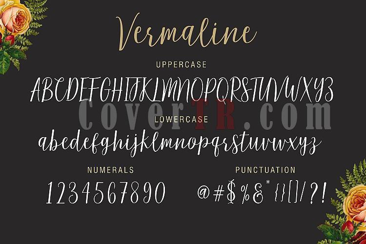 Vermaline Font-5-ojpg