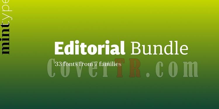 Mint Type Editorial Bundle font-221129jpg