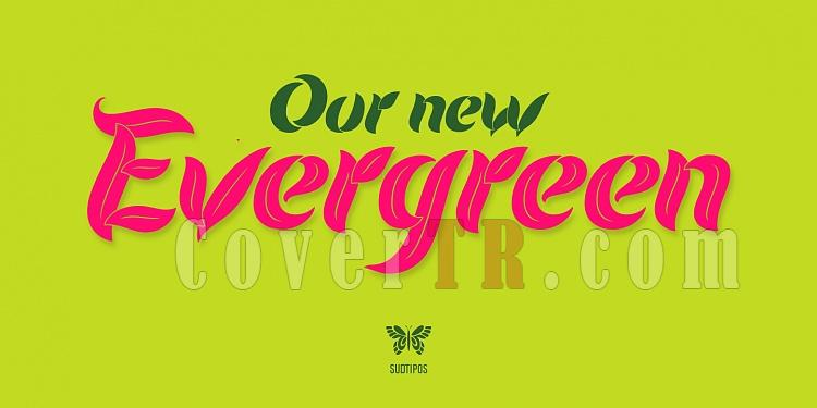 Evergreen Font-131995jpg