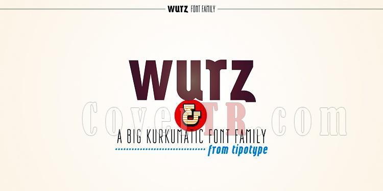 Wurz Font Family-108714jpg