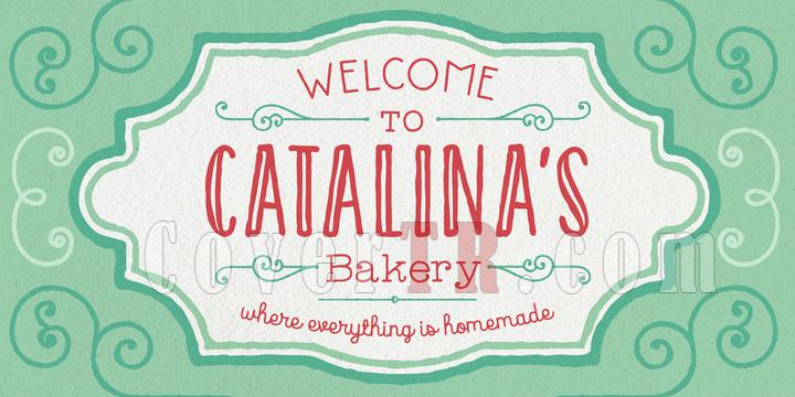 Catalina Font Family-151885jpg