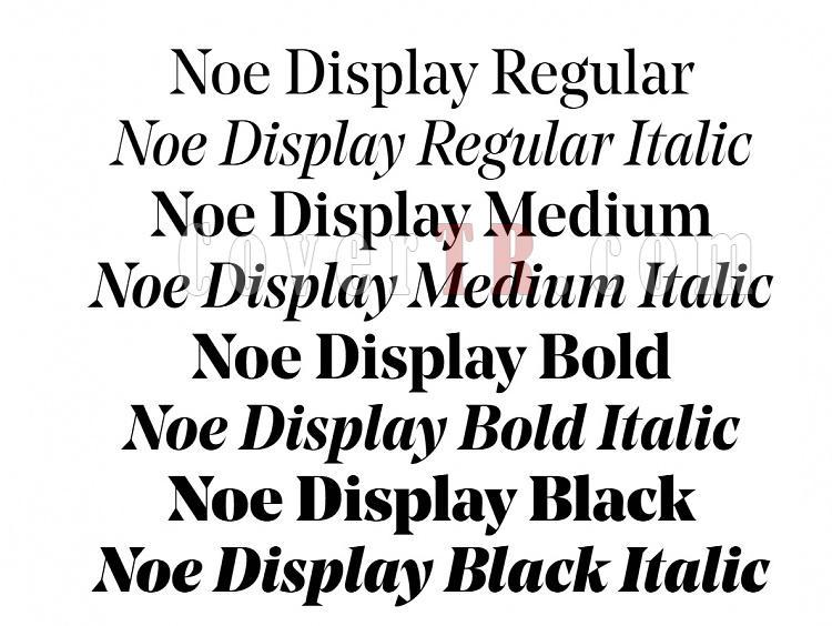 Noe Text - Noe Display (schick-toikka)-7879jpg