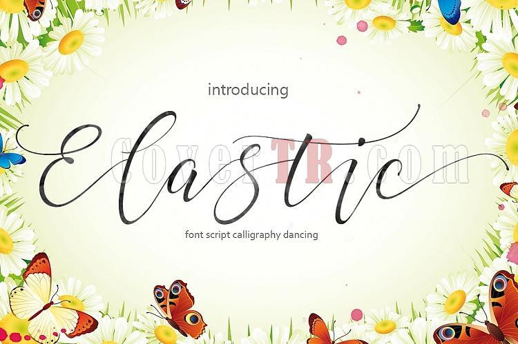 Elastic Script Font-1-jpg