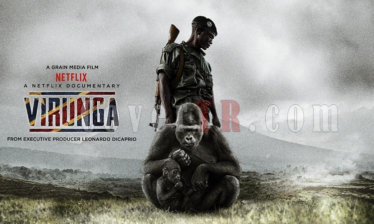 Virunga (Movie) Font-virungajpg