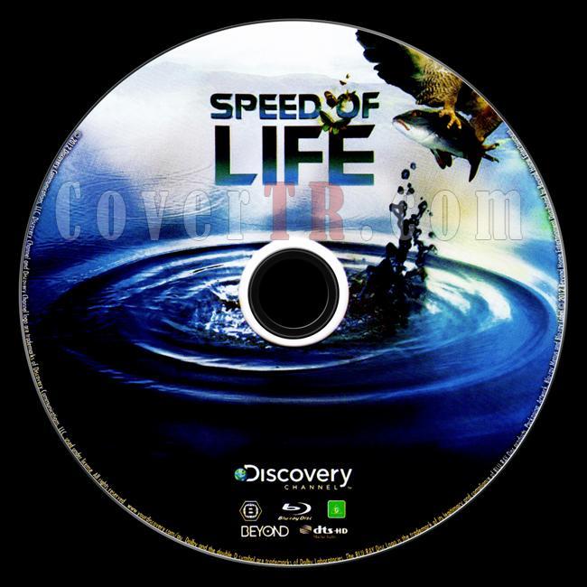 Speed of Life - Custom Bluray Label - English [2010]-speed-lifejpg