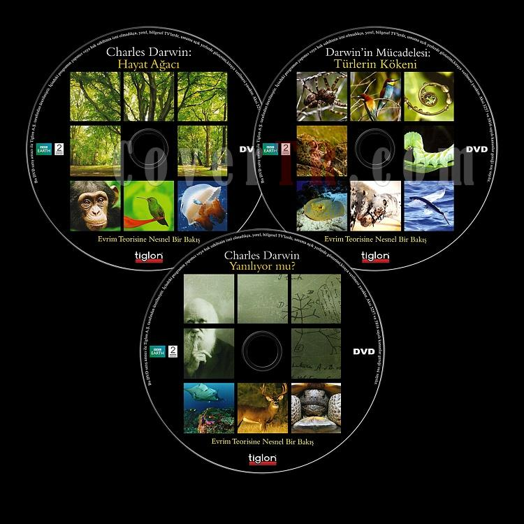 The Evolution Of The Origin Of Species (BBC:Türlerin Kökeni) - Scan Dvd Label - Türkçe [2009]-bbc-turlerin-kokeni-evolution-origin-speciesjpg