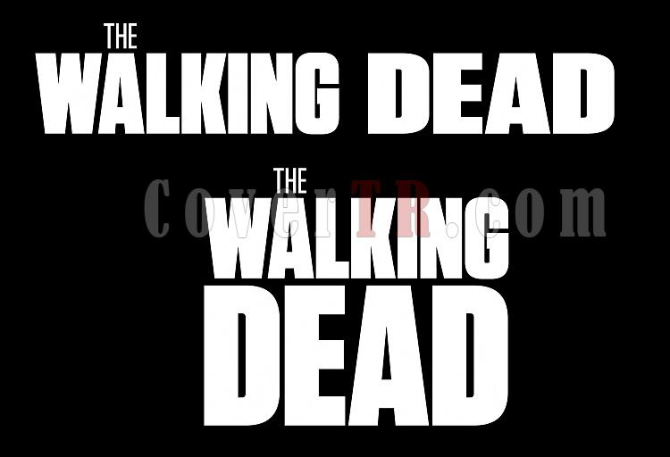Walking Dead, The [2010-?]-walking-deadjpg