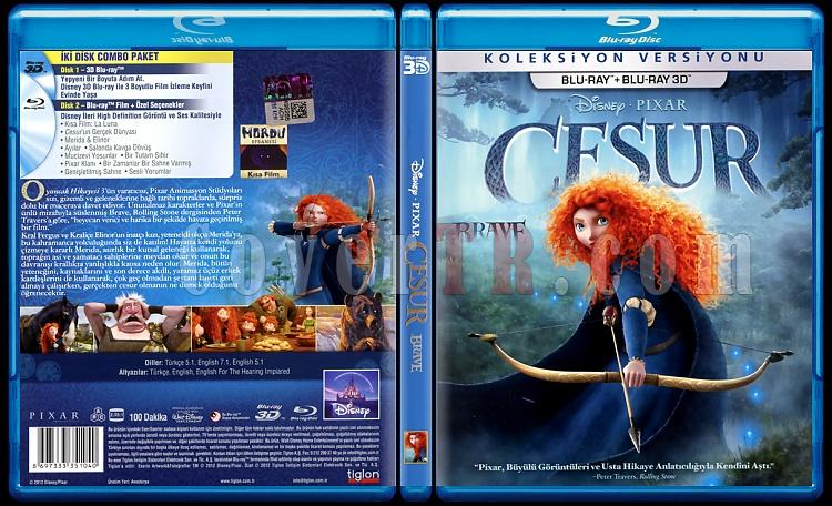 -brave-cesur-scan-bluray-cover-turkce-2012jpg